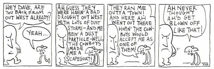 cowboy 16