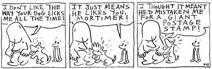 Dog 11